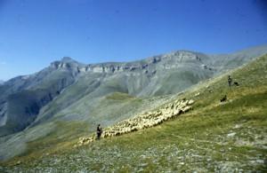 1990, Marcel Bellieud et Serge Brun sur la montagne de l'Estrop (Péone)