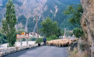 Guillaumes foire aux tardons, 1993. L'arrivée à Guillaumes.