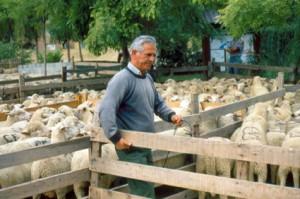 berger pastoralisme foire