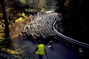 2006, la descente du col de Bleyne vers St-Aubant