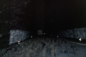 2006, entrée dans un des tunnels des gorges de Daluis