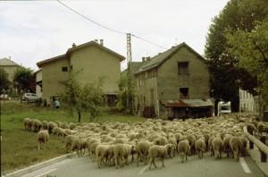 2007, l'arrivée à Villeneuve d'Entraunes