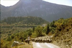 2007, descente du col du Buis sur Briançonnet