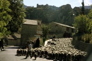 2007, l'arrivée du col du Buis et la traversée du village de Briançonnet