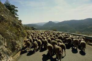 2007, la descente du col de Bleine vers les Quatre Chemins