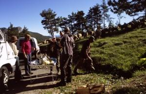 2008, le casse-croûte au col de Bleine