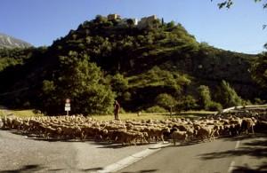 2008, le départ de la halte de Daluis