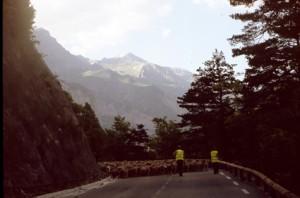 2008, sur la route d'Entraunes
