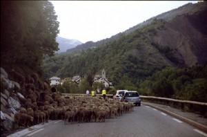 2008, l'arrivée à Entraunes