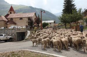 2011, l'arrivée à Roya, la traversée du hameau