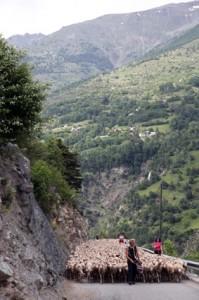 2013, sur la route de Roya, en arrière plan vue sur Douans
