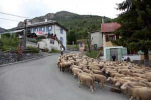 2013, la traversée du hameau de Roya