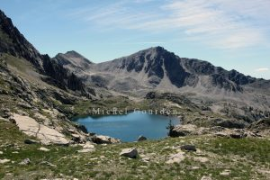 2016 le lac des Bresses IMG_5014