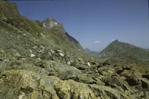 le Mont Viso vu du col du Viso
