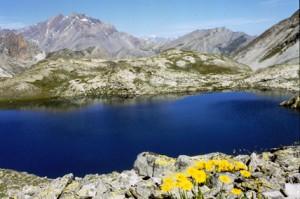 le lac du Roure