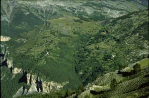 Barels, les hameaux, Guillaumes