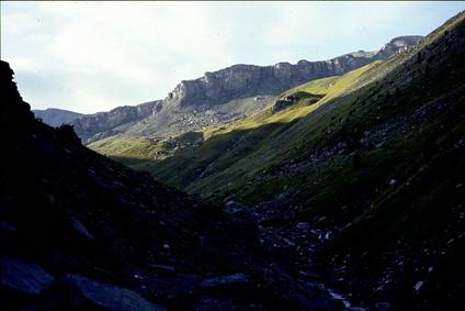 le vallon de Sallevieille, Beuil, 1991