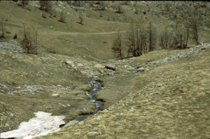 vallon de la Boucharde, 2001