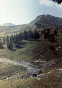 Entraunes cabane des Couostas 1982 AD-363