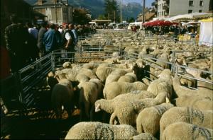 Foire de la St-Michel, Barcelonnette, 2006