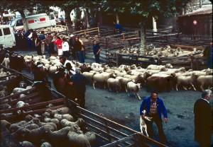 Guillaumes la foire aux tardons, 1980