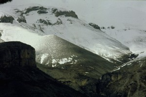 Cime Nègre au printemps, Péone 1991