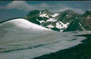 le Pelat (3050m) vu des Garrets (2822m), juillet 1986