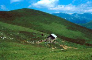 Pierlas cabane de Giarons1995, AH