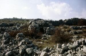 cabane 7393, Calern, 1978