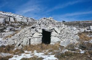 cabane 7101 Haut- Montet, 1977