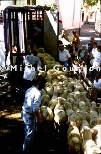 Guillaumes foire aux tardons, 1998