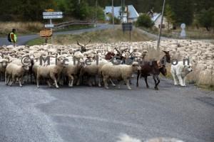 en route pour Uvernet (2013)