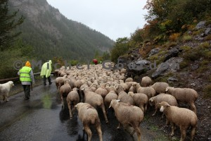 la descente vers les gorges du Bachelard (2013)