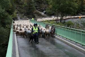 la traversée du pont sur le Bachelard (2013)