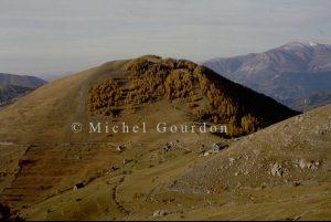 Charnaye 1991, 4A2-482