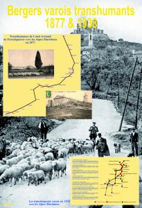 Poster bergers varois transhumants copie