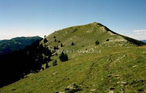 Tête de Méric, 2002-08, 2C-15a-062